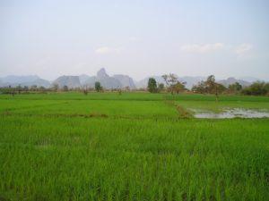 laos-451_640